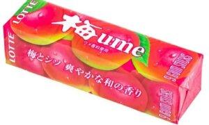 JDM Ume Plum Chewing Gum Lotte Brand, 9 Sticks Pack #1131
