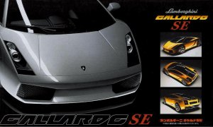 1:24 Scale Lamborghini Gallardo SE Model Kit #831